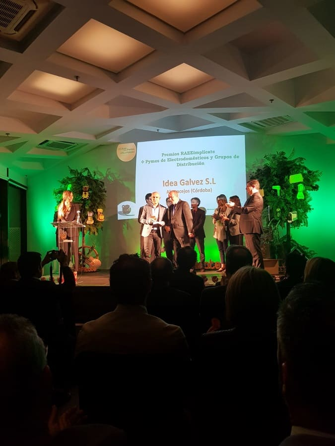 Entrega de premios RAAE Implícate 2018 Sevilla - Idea Gálvez